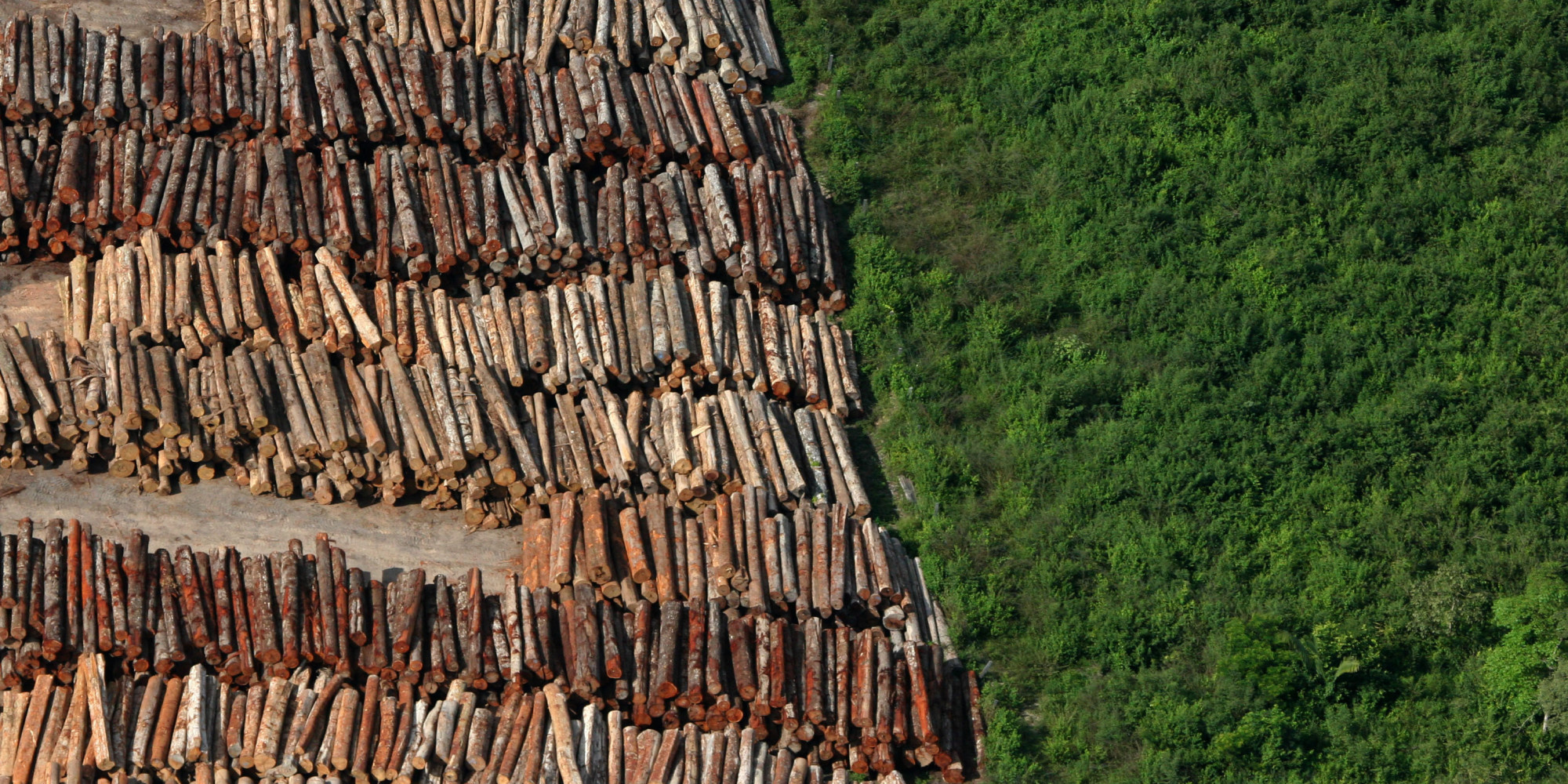 De acordo com Projeto de Monitoramento do Desmatamento na Amazônia Legal por Satélite (PRODES), 8.000 km² foram desmatados entre 2015 e 2016 (Foto: Reprodução/Internet)