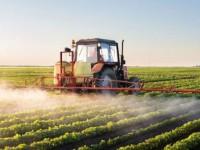 A Abrasco revelou em Dossiê sobre agrotóxicos, de 2015, que o brasileiro consome, por meio dos alimentos, 7,3 litros de pesticidas por ano (Foto: Reprodução/Internet)