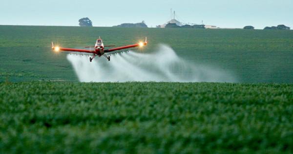 No início de 2019, foi colocada em vigor a lei que proíbe a pulverização aérea de agrotóxicos no Estado Ceará. O projeto tem a autoria do deputado Estadual Renato Roseno (PSOL-CE) (Foto: Agência Brasil)