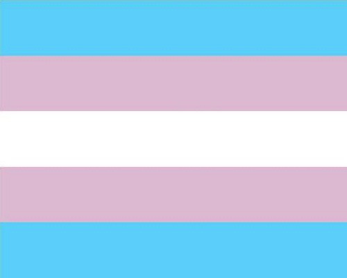 bandeira-orgulho-trans