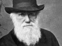 Charles Darwin foi um naturalista britânico, autor do livro A Origem das Espécies, livro que apresenta a Teoria da Evolução (Foto: Reprodução/Internet)