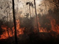 Na Amazônia Legal os focos ativos de queimadas em agosto de 2019 ficaram acima da média dos últimos 20 anos (Foto: Ueslei Marcelino/ Reuters)