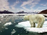 Os efeitos do aquecimento global já são severos, mas ainda há quem os negue (Foto: Portal Energia)