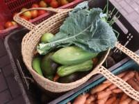 Fortaleza registra aumento no preço dos alimentos que compõem a cesta básica (Foto: Danielle Gadelha)