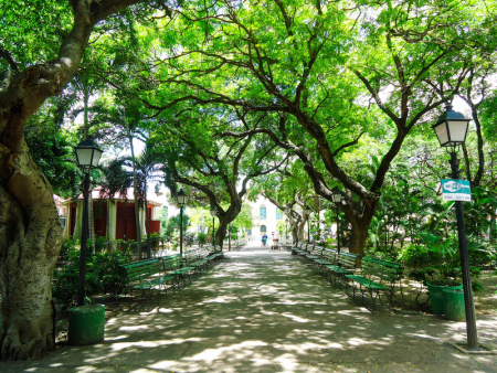 Fortaleza é favorecida por uma ventilação natural, permitindo que praças arborizadas sejam espaços de convivência até para restaurantes (Foto: Nakinn)