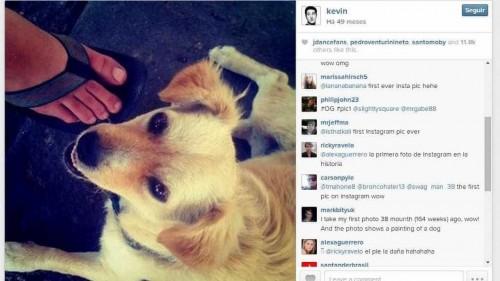 A primeira fotografia postada no Instagram foi o cão de Kevin Systrom, fundador da plataforma (Foto: Reprodução/Internet)