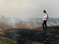 Segundo o INPE, nos primeiros 7 meses de 2020, foi registrado o maior índice de queimadas no Pantanal desde 1999 (Foto: Arquivo Pessoal/Viviane Layme)