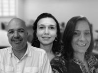 A carta-patente tem como titulares a UFC, a UFMG e a Fundação de Amparo à Pesquisa do Estado de Minas Gerais (Foto: Reprodução/Internet)