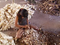 2021 é o Ano Internacional de Eliminação do Trabalho Infantil (Foto: ONG Repórter Brasil)