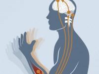 Crise que dura mais de cinco minutos ou crises recorrentes indicam uma situação de emergência neurológica e a pessoa precisa de tratamento médico (Foto: Reprodução/Internet)