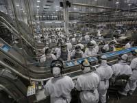 """O IPP mede a variação dos preços de produtos na """"porta da fábrica"""", sem impostos e frete, de 24 atividades das indústrias extrativas e da transformação (Foto: Divulgação/Aen)"""