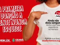 Quase metade das doações recebidas pelo Hemoce em 2020 foram de doadores regulares, aqueles que doam sangue mais de uma vez por ano. Eles representaram 48% do total de doações (Foto: Divulgação)