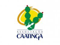 O objetivo é arrecadar alimentos para famílias do semiárido (Foto: Associação Caatinga)