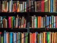 Idealizadores apontam que as 4 bibliotecas públicas municipais não são suficientes para a população de Fortaleza (Foto: Pixabay)