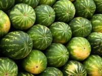 Melancia será uma das frutas que terá redução das perdas no cultivo com a nova invenção (Foto: Pixabay)