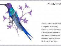 A maioria das aves homenageadas compõe o Guia de Aves da Floresta Nacional da Restinga de Cabedelo, localizada na Paraíba (Foto; Reprodução/Instagram)